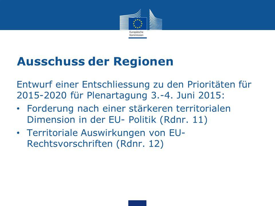 Ausschuss der Regionen Entwurf einer Entschliessung zu den Prioritäten für 2015-2020 für Plenartagung 3.-4.