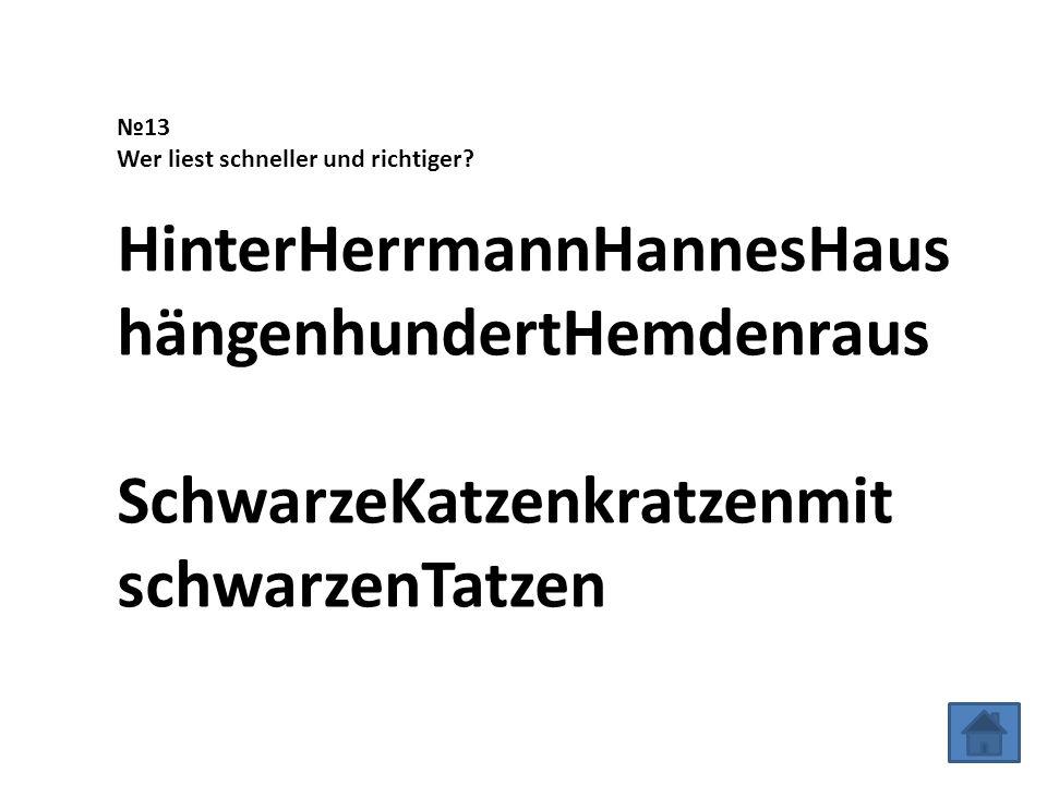 №13 Wer liest schneller und richtiger.