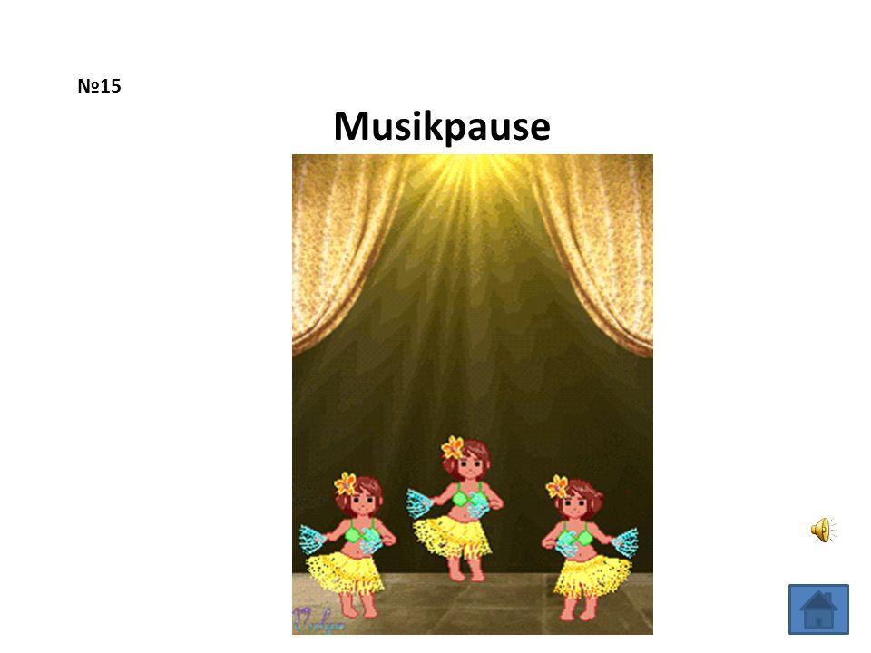 №15 Musikpause