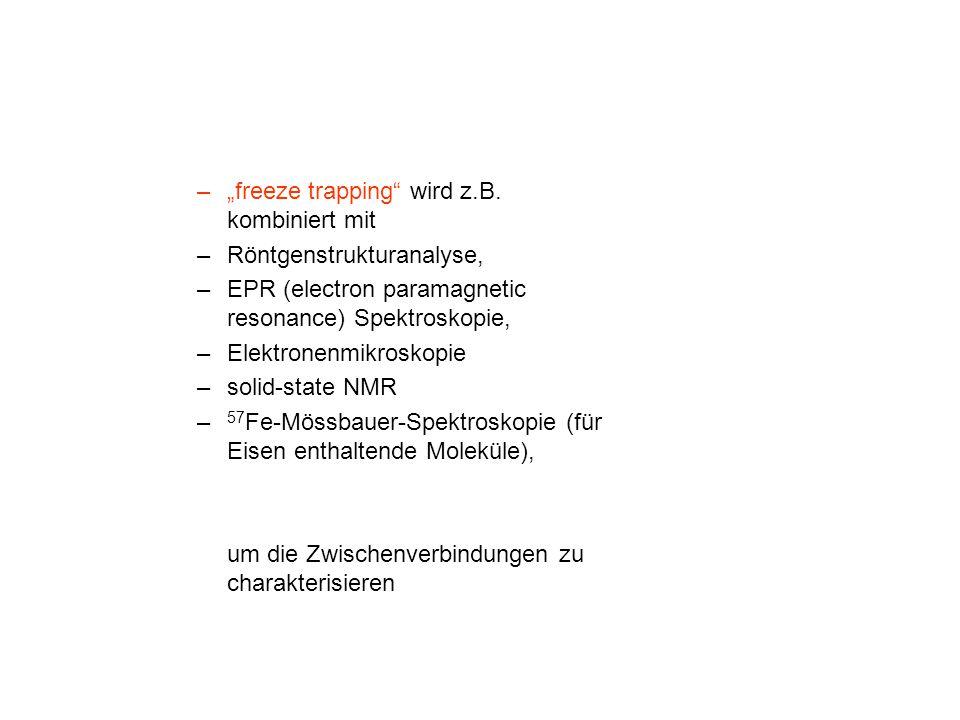 """–""""freeze trapping"""" wird z.B. kombiniert mit –Röntgenstrukturanalyse, –EPR (electron paramagnetic resonance) Spektroskopie, –Elektronenmikroskopie –sol"""