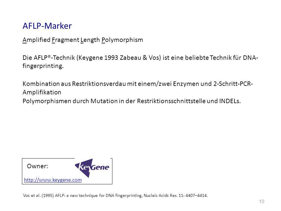 10 AFLP-Marker Amplified Fragment Length Polymorphism Die AFLP®-Technik (Keygene 1993 Zabeau & Vos) ist eine beliebte Technik für DNA- fingerprinting.