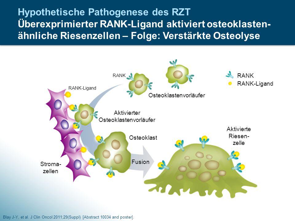 Osteoklastenvorläufer RANK RANK-Ligand Stroma- zellen Aktivierter Osteoklastenvorläufer Osteoklast Aktivierte Riesen- zelle RANK-Ligand Fusion Hypothe