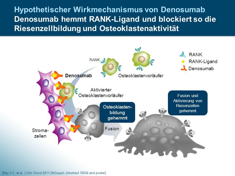 Hypothetischer Wirkmechanismus von Denosumab Denosumab hemmt RANK-Ligand und blockiert so die Riesenzellbildung und Osteoklastenaktivität Blay J-Y, et