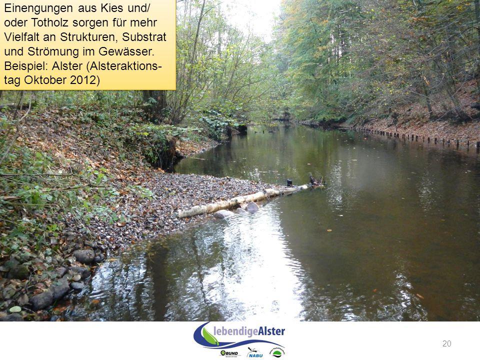 20 Einengungen aus Kies und/ oder Totholz sorgen für mehr Vielfalt an Strukturen, Substrat und Strömung im Gewässer. Beispiel: Alster (Alsteraktions-