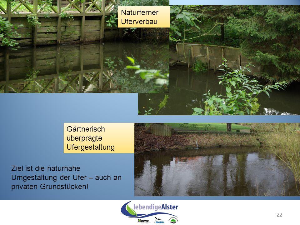 22 Naturferner Uferverbau Gärtnerisch überprägte Ufergestaltung Ziel ist die naturnahe Umgestaltung der Ufer – auch an privaten Grundstücken!