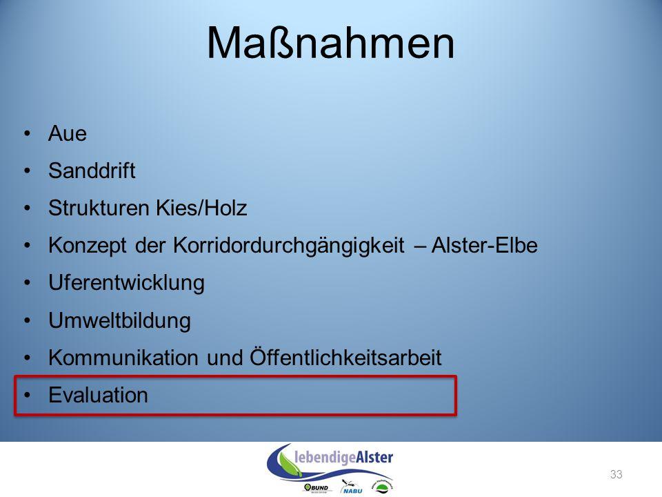 Maßnahmen Aue Sanddrift Strukturen Kies/Holz Konzept der Korridordurchgängigkeit – Alster-Elbe Uferentwicklung Umweltbildung Kommunikation und Öffentl