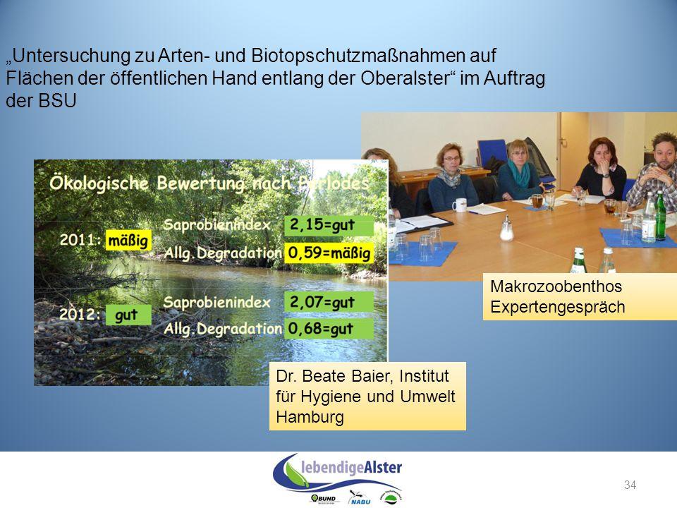 """34 """"Untersuchung zu Arten- und Biotopschutzmaßnahmen auf Flächen der öffentlichen Hand entlang der Oberalster"""" im Auftrag der BSU Makrozoobenthos Expe"""