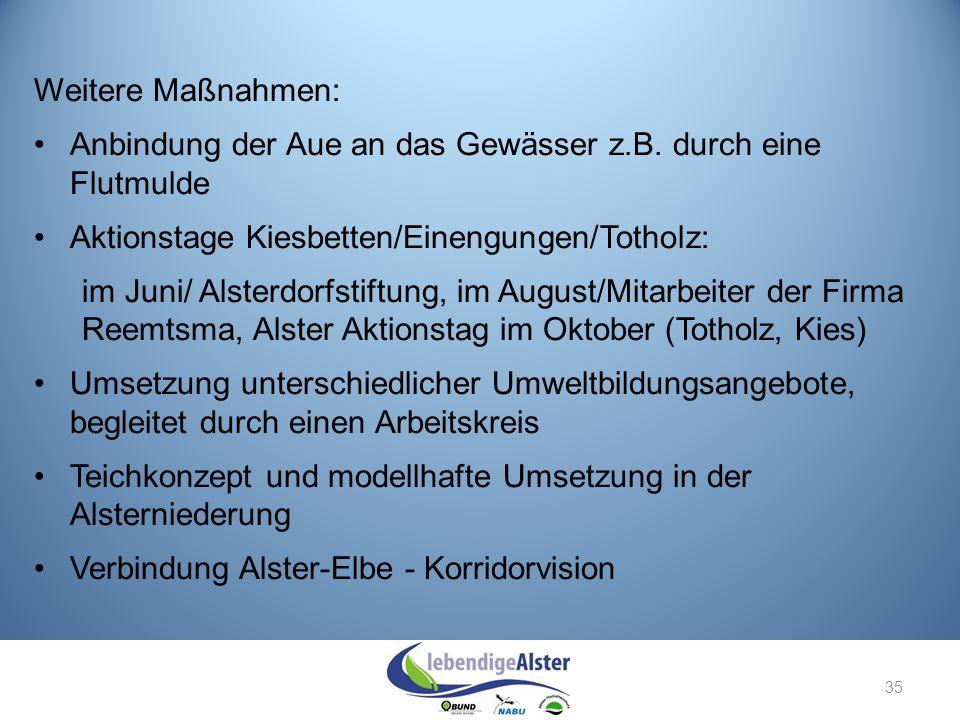 Weitere Maßnahmen: Anbindung der Aue an das Gewässer z.B. durch eine Flutmulde Aktionstage Kiesbetten/Einengungen/Totholz: im Juni/ Alsterdorfstiftung