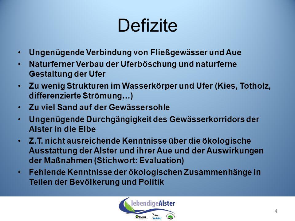 Weitere Maßnahmen: Anbindung der Aue an das Gewässer z.B.