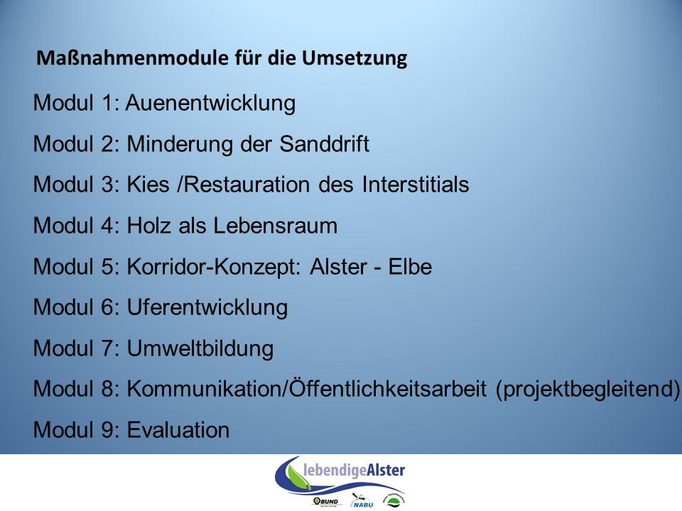 Modul 1: Auenentwicklung Modul 2: Minderung der Sanddrift Modul 3: Kies /Restauration des Interstitials Modul 4: Holz als Lebensraum Modul 5: Korridor