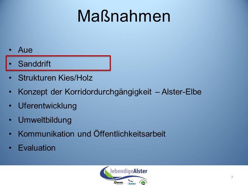 18 Juni 2013 Alsterdorfstiftung