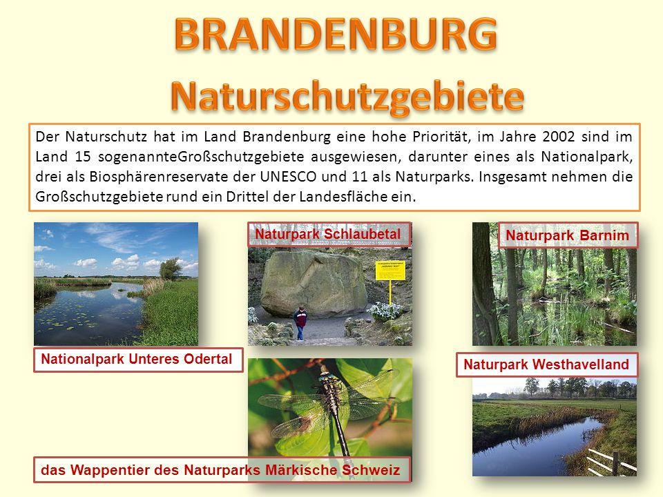 Der Naturschutz hat im Land Brandenburg eine hohe Priorität, im Jahre 2002 sind im Land 15 sogenannteGroßschutzgebiete ausgewiesen, darunter eines als