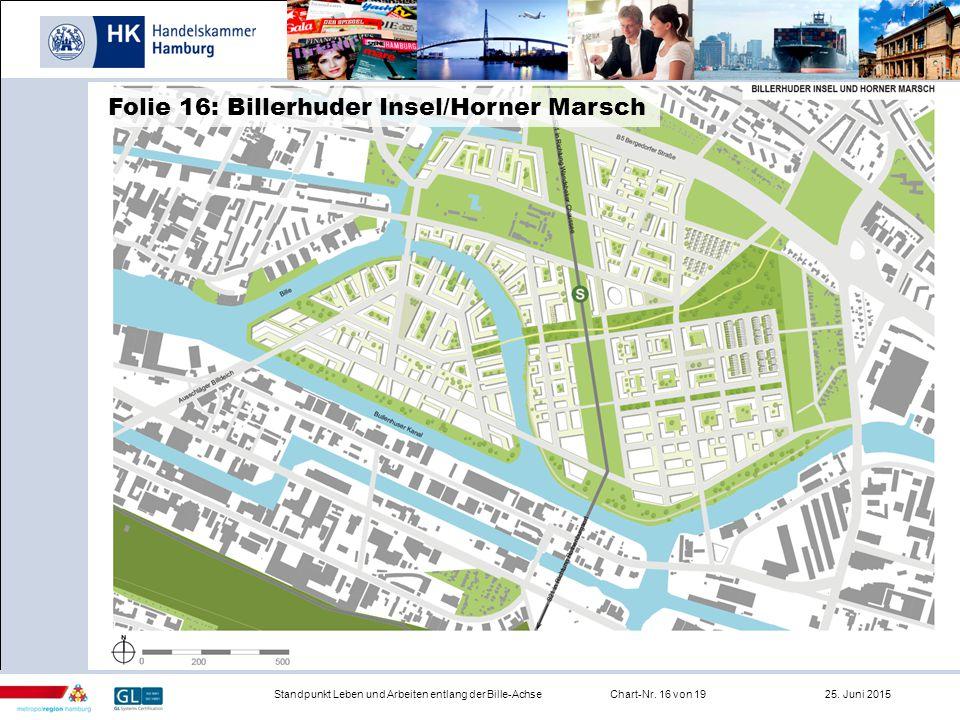 Infrastruktur Standpunkt Leben und Arbeiten entlang der Bille-AchseChart-Nr. 16 von 19 25. Juni 2015 Folie 16: Billerhuder Insel/Horner Marsch