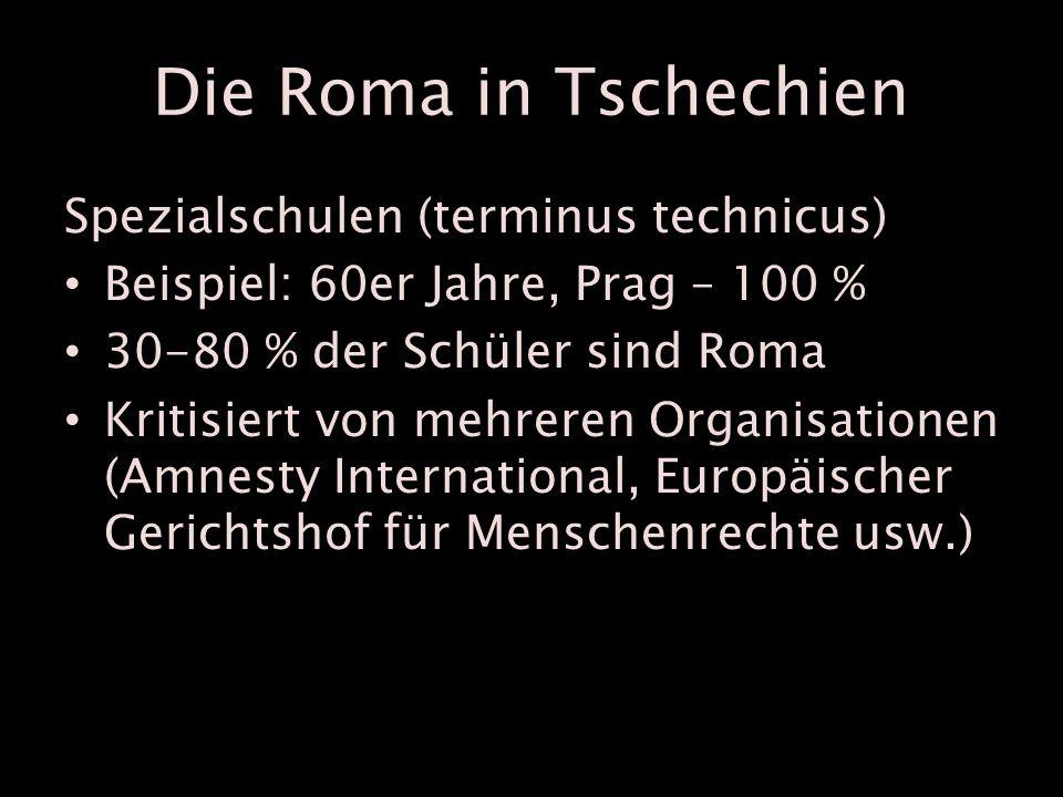 Die Roma in Tschechien Spezialschulen (terminus technicus) Beispiel: 60er Jahre, Prag – 100 % 30-80 % der Schüler sind Roma Kritisiert von mehreren Organisationen (Amnesty International, Europäischer Gerichtshof für Menschenrechte usw.)