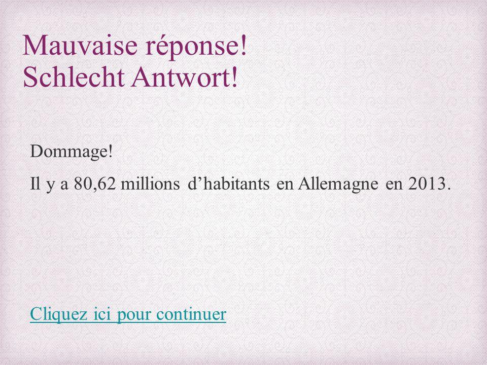 Mauvaise réponse! Schlecht Antwort! Dommage! Il y a 80,62 millions d'habitants en Allemagne en 2013. Cliquez ici pour continuer