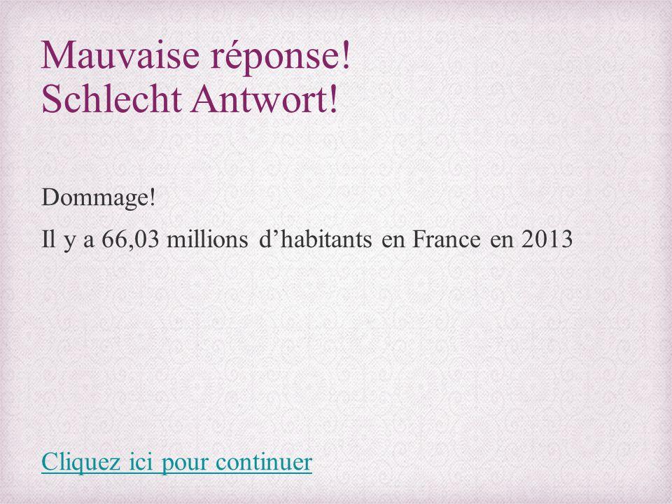 Mauvaise réponse! Schlecht Antwort! Dommage! Il y a 66,03 millions d'habitants en France en 2013 Cliquez ici pour continuer