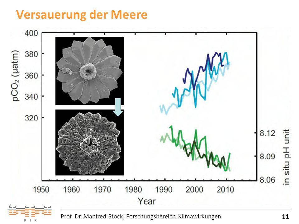 Versauerung der Meere 11 Prof. Dr. Manfred Stock, Forschungsbereich Klimawirkungen