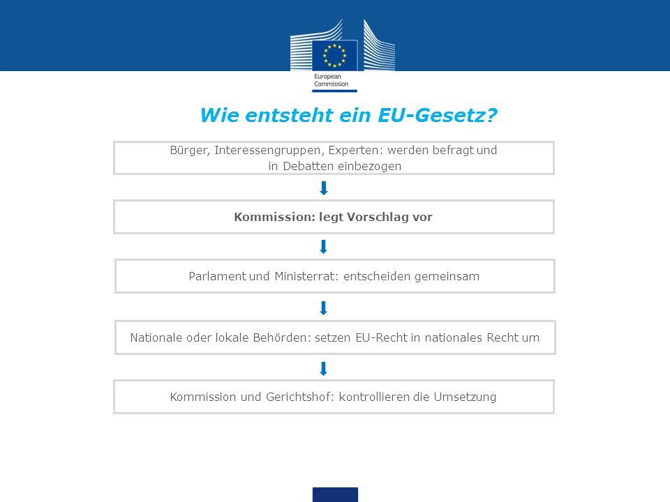 Bürger, Interessengruppen, Experten: werden befragt und in Debatten einbezogen Kommission: legt Vorschlag vor Parlament und Ministerrat: entscheiden g
