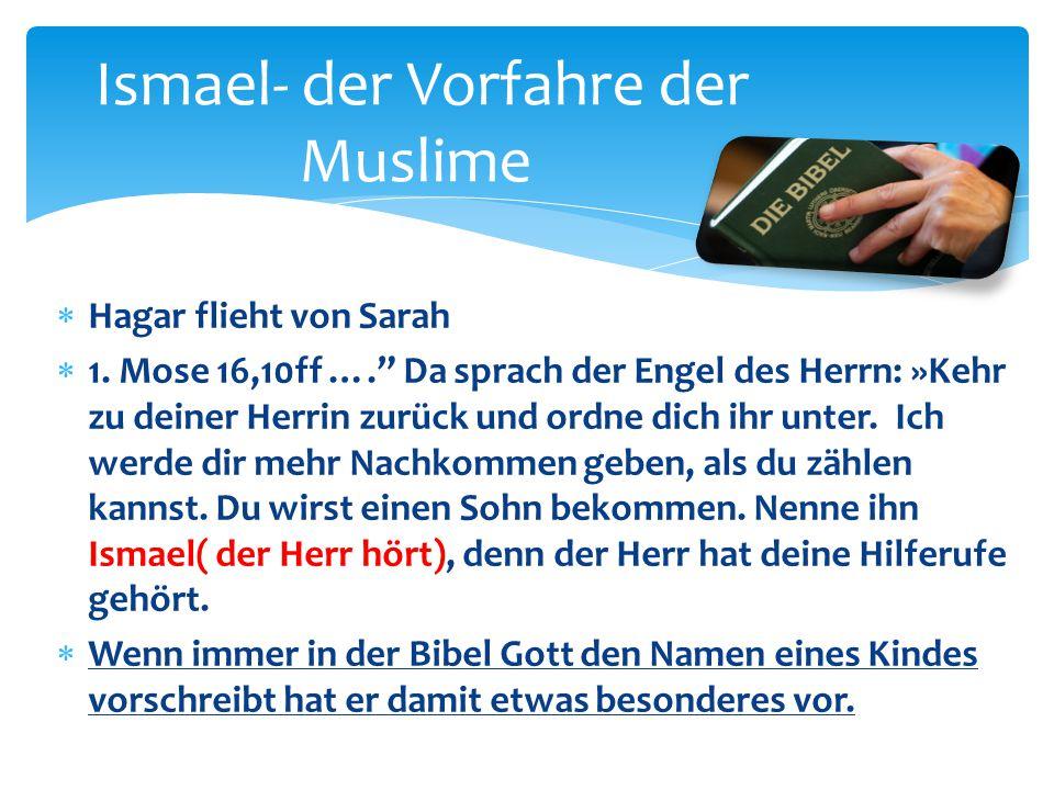 """Ismael- der Vorfahre der Muslime  Hagar flieht von Sarah  1. Mose 16,10ff …."""" Da sprach der Engel des Herrn: »Kehr zu deiner Herrin zurück und ordne"""