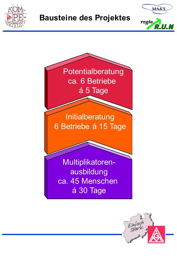 13 Bausteine des Projektes Multiplikatoren- ausbildung ca.