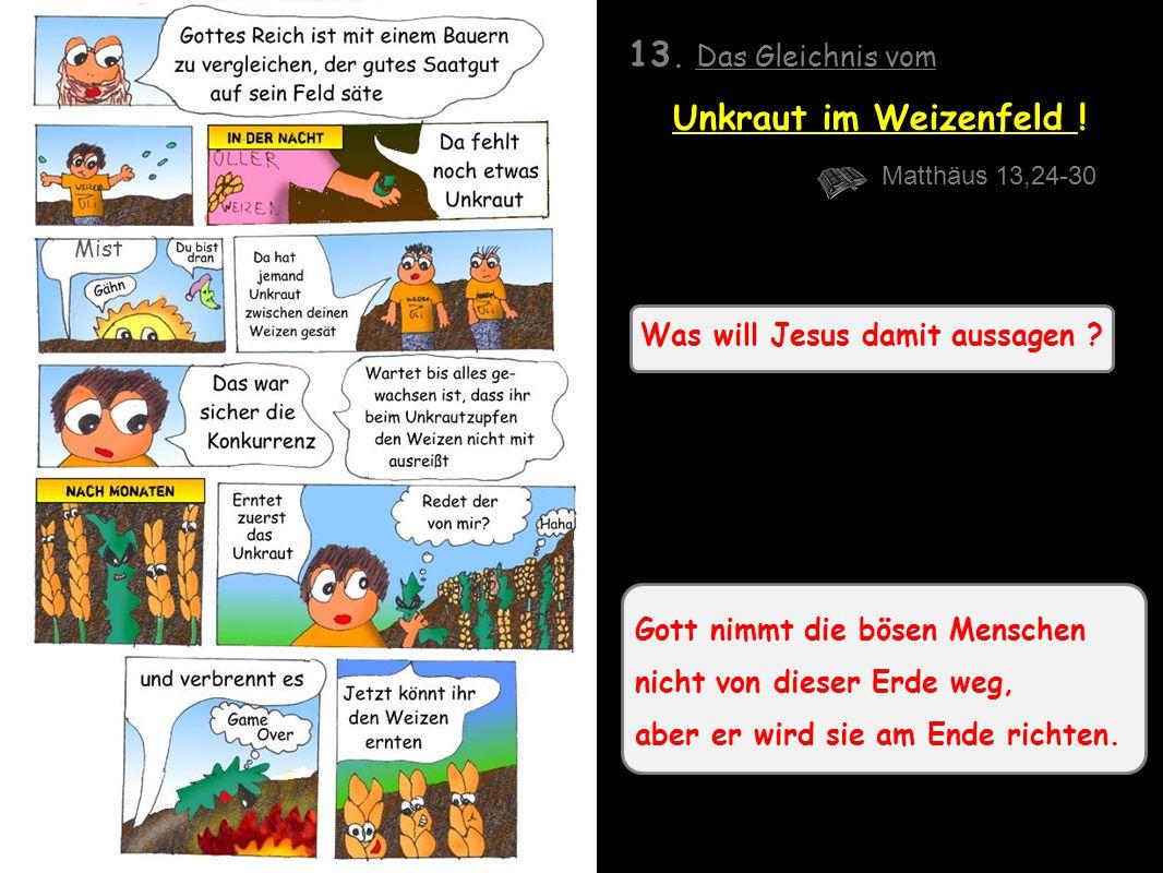Was will Jesus damit aussagen .13. Das Gleichnis vom Unkraut im Weizenfeld .