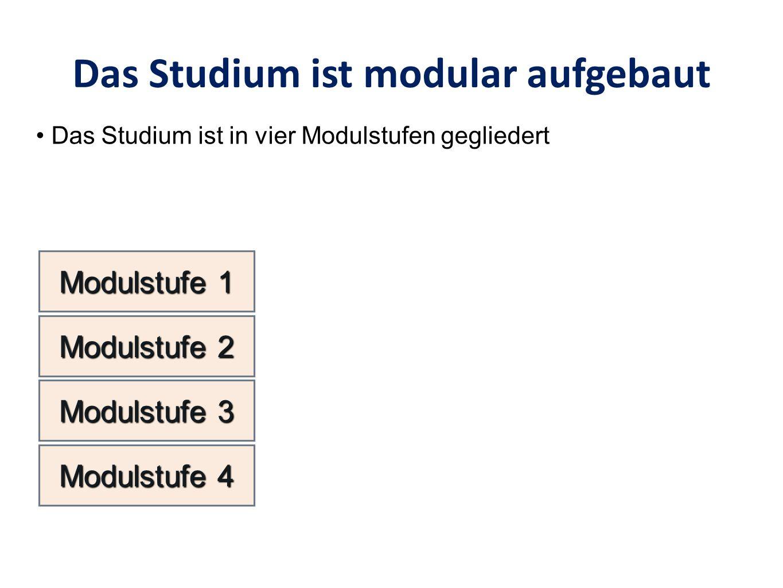 Das Studium ist modular aufgebaut Modulstufe 1 Das Studium ist in vier Modulstufen gegliedert Modulstufe 2 Modulstufe 3 Modulstufe 4