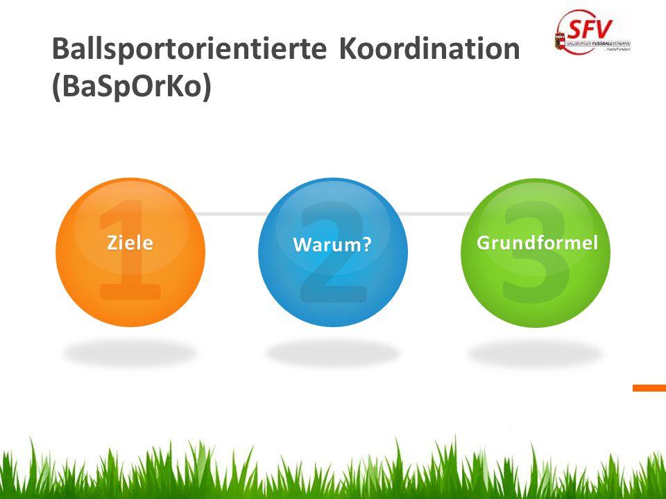 Ballsportorientierte Koordination (BaSpOrKo) 1Ziele 2Warum? 3Grundformel