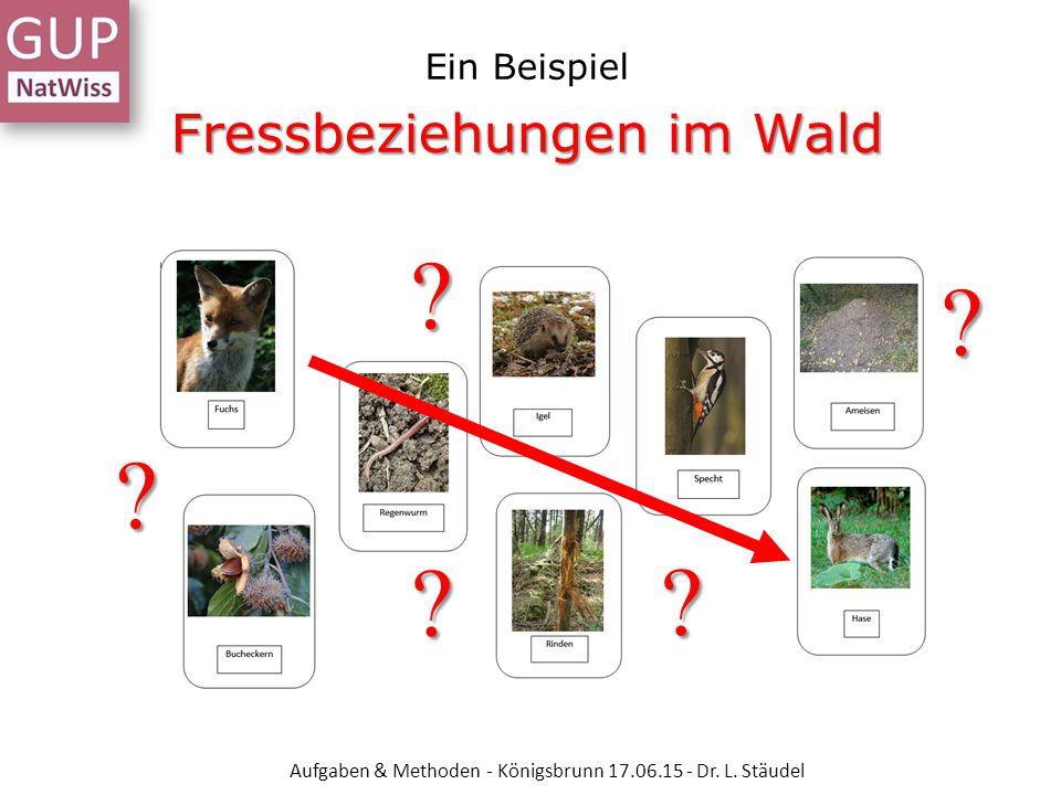 Ein Beispiel Fressbeziehungen im Wald Aufgaben & Methoden - Königsbrunn 17.06.15 - Dr. L. Stäudel ? ? ? ? ?