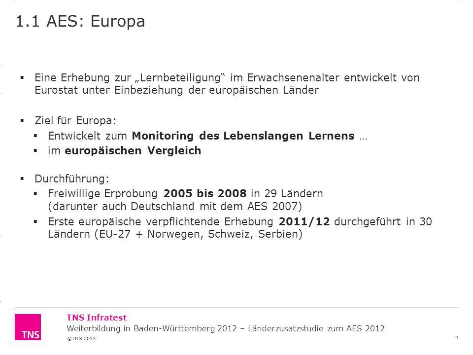 ©TNS 2013 3.14 X AXIS 6.65 BASE MARGIN 5.95 TOP MARGIN 4.52 CHART TOP 11.90 LEFT MARGIN 11.90 RIGHT MARGIN TNS Infratest 1.1 AES: Europa 4  Eine Erhe