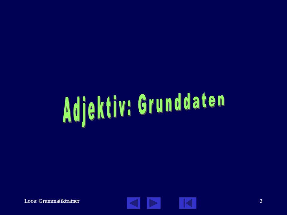 Loos: Grammatiktrainer14 Deklination: Grundmuster - harter Stamm Akk: belebt - unbelebt, mehr