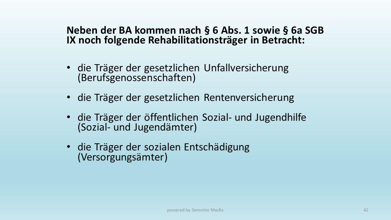 Neben der BA kommen nach § 6 Abs. 1 sowie § 6a SGB IX noch folgende Rehabilitationsträger in Betracht: die Träger der gesetzlichen Unfallversicherung