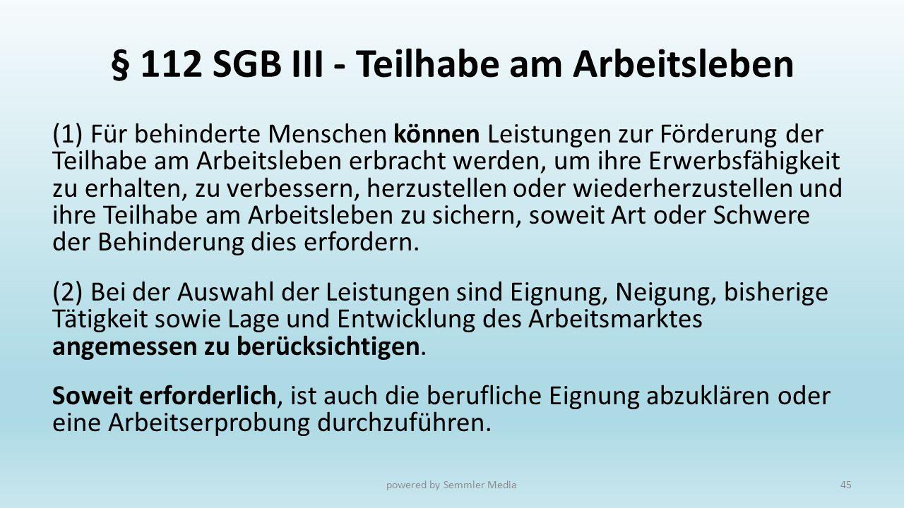 § 112 SGB III - Teilhabe am Arbeitsleben (1) Für behinderte Menschen können Leistungen zur Förderung der Teilhabe am Arbeitsleben erbracht werden, um