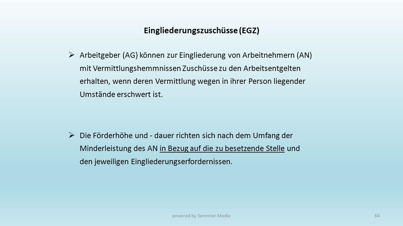 Eingliederungszuschüsse (EGZ)  Arbeitgeber (AG) können zur Eingliederung von Arbeitnehmern (AN) mit Vermittlungshemmnissen Zuschüsse zu den Arbeitsen