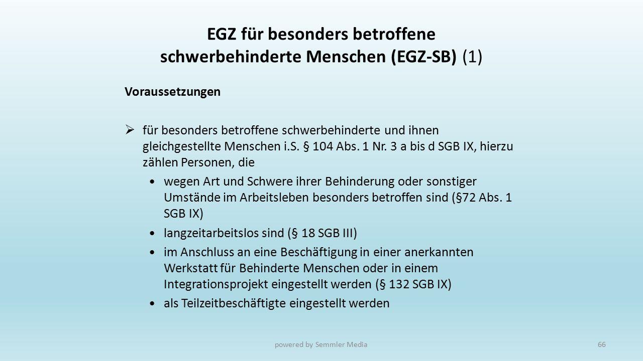 EGZ für besonders betroffene schwerbehinderte Menschen (EGZ-SB) (1) Voraussetzungen  für besonders betroffene schwerbehinderte und ihnen gleichgestel