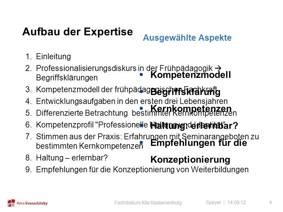 Aufbau der Expertise Speyer | 14.09.12 Fachdiskurs Kita Kastanienburg 4 1.Einleitung 2.Professionalisierungsdiskurs in der Frühpädagogik  Begriffsklä