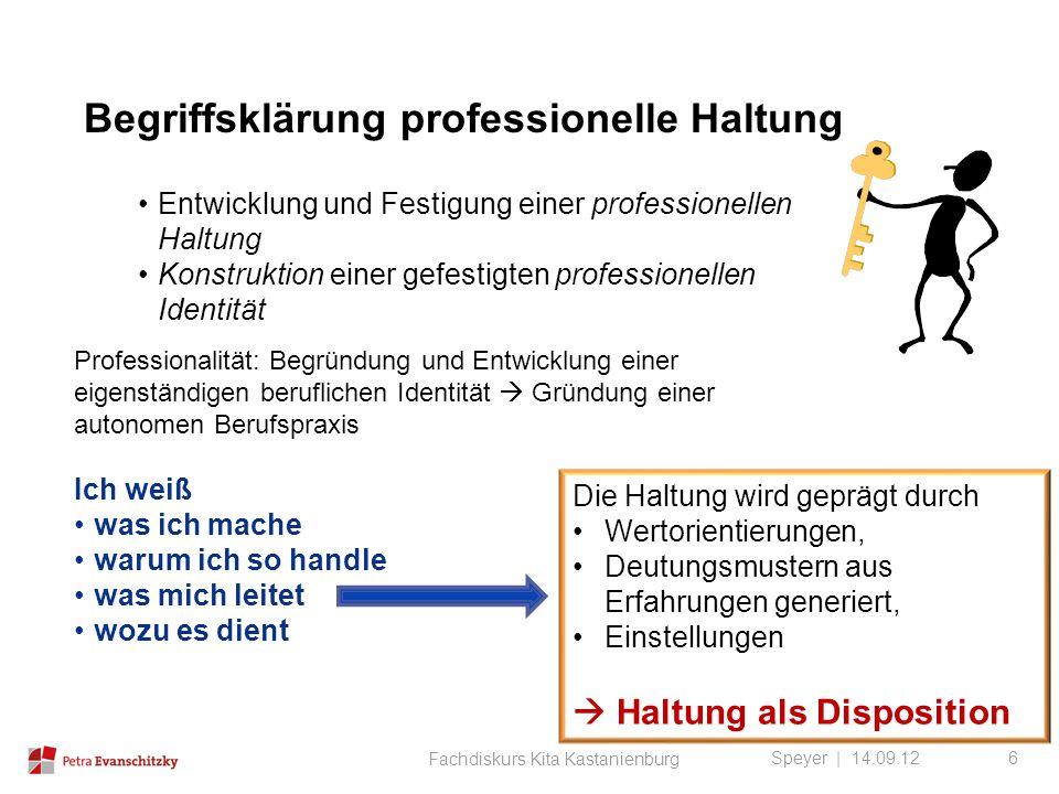 Begriffsklärung professionelle Haltung Speyer | 14.09.12 Entwicklung und Festigung einer professionellen Haltung Konstruktion einer gefestigten profes