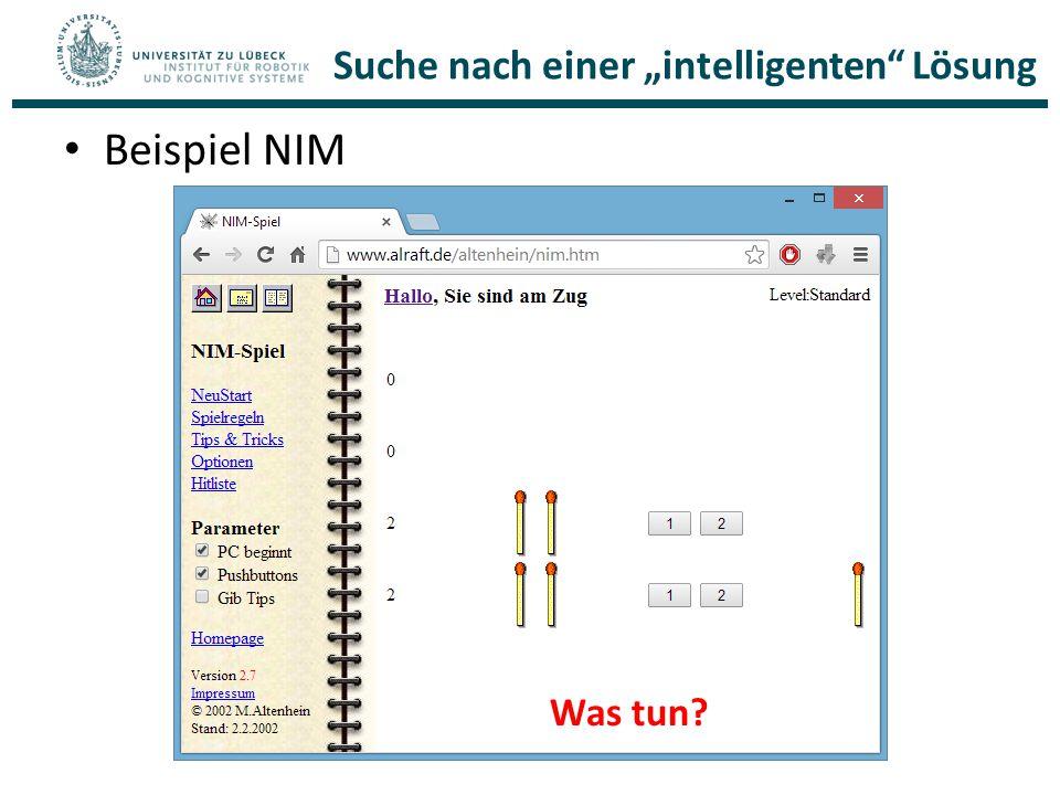 """Suche nach einer """"intelligenten"""" Lösung Beispiel NIM Was tun?"""