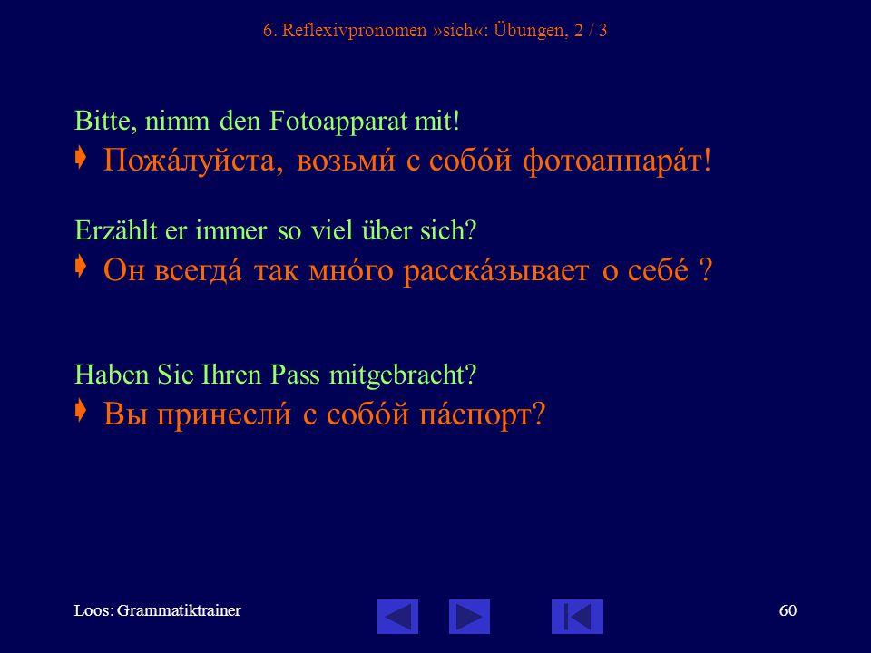 Loos: Grammatiktrainer60 6.