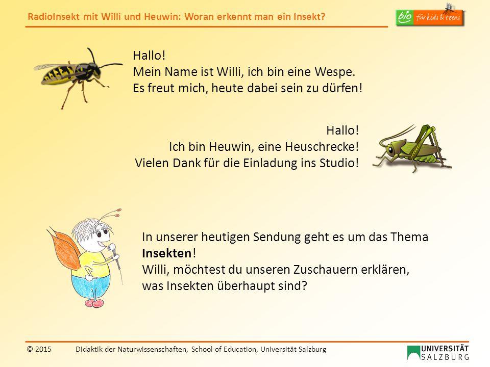 RadioInsekt mit Willi und Heuwin: Woran erkennt man ein Insekt? © 2015Didaktik der Naturwissenschaften, School of Education, Universität Salzburg Hall
