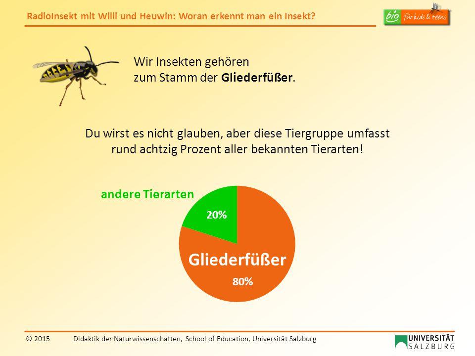 RadioInsekt mit Willi und Heuwin: Woran erkennt man ein Insekt? © 2015Didaktik der Naturwissenschaften, School of Education, Universität Salzburg Du w