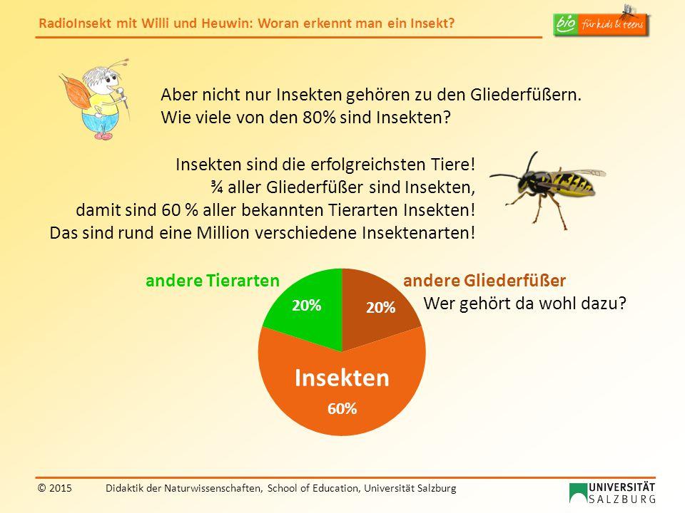 RadioInsekt mit Willi und Heuwin: Woran erkennt man ein Insekt? © 2015Didaktik der Naturwissenschaften, School of Education, Universität Salzburg Aber