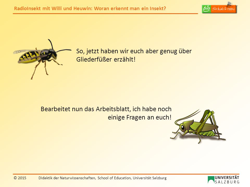 RadioInsekt mit Willi und Heuwin: Woran erkennt man ein Insekt? © 2015Didaktik der Naturwissenschaften, School of Education, Universität Salzburg So,