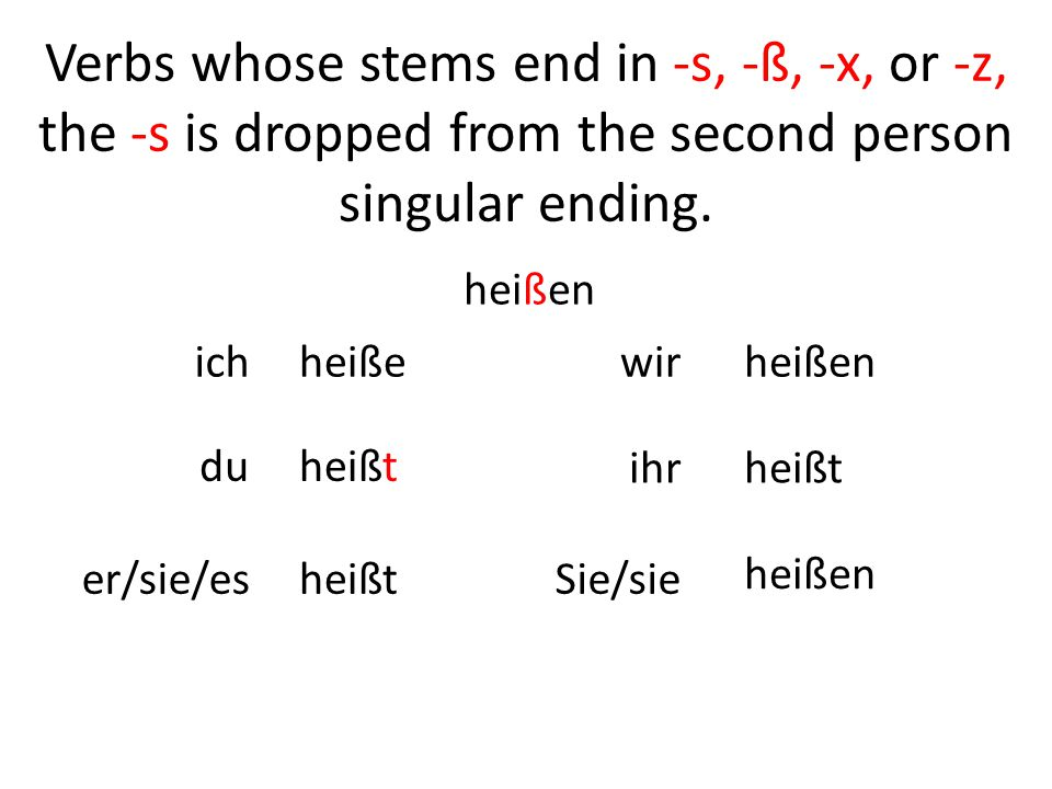 Common regular verbs (present tense)