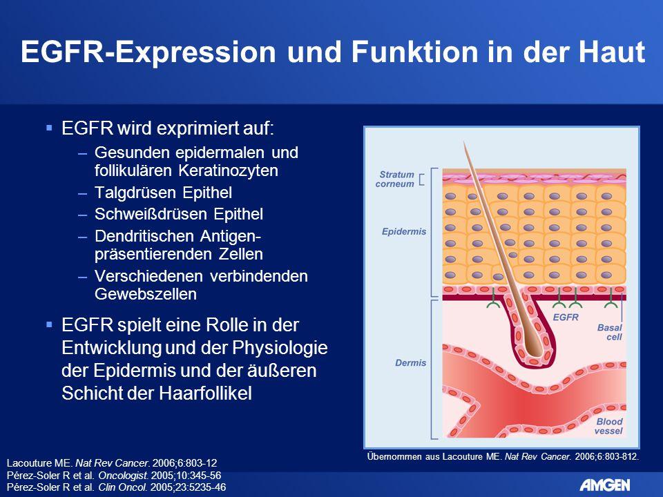 EGFR-Expression und Funktion in der Haut  EGFR wird exprimiert auf: –Gesunden epidermalen und follikulären Keratinozyten –Talgdrüsen Epithel –Schweiß
