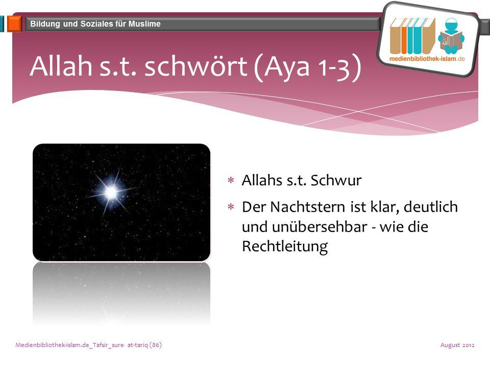 Erschaffung des Menschen (Aya 4-10)  Der Bewahrer jeder Seele  Ursprung des Menschen  Erhaltung der Rechtleitung durch Allahs s.t.