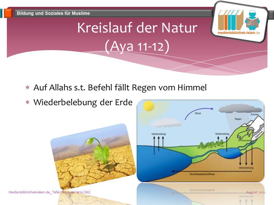 Kreislauf der Natur (Aya 11-12)  Auf Allahs s.t. Befehl fällt Regen vom Himmel  Wiederbelebung der Erde August 2012Medienbibliothek-islam.de_Tafsir_