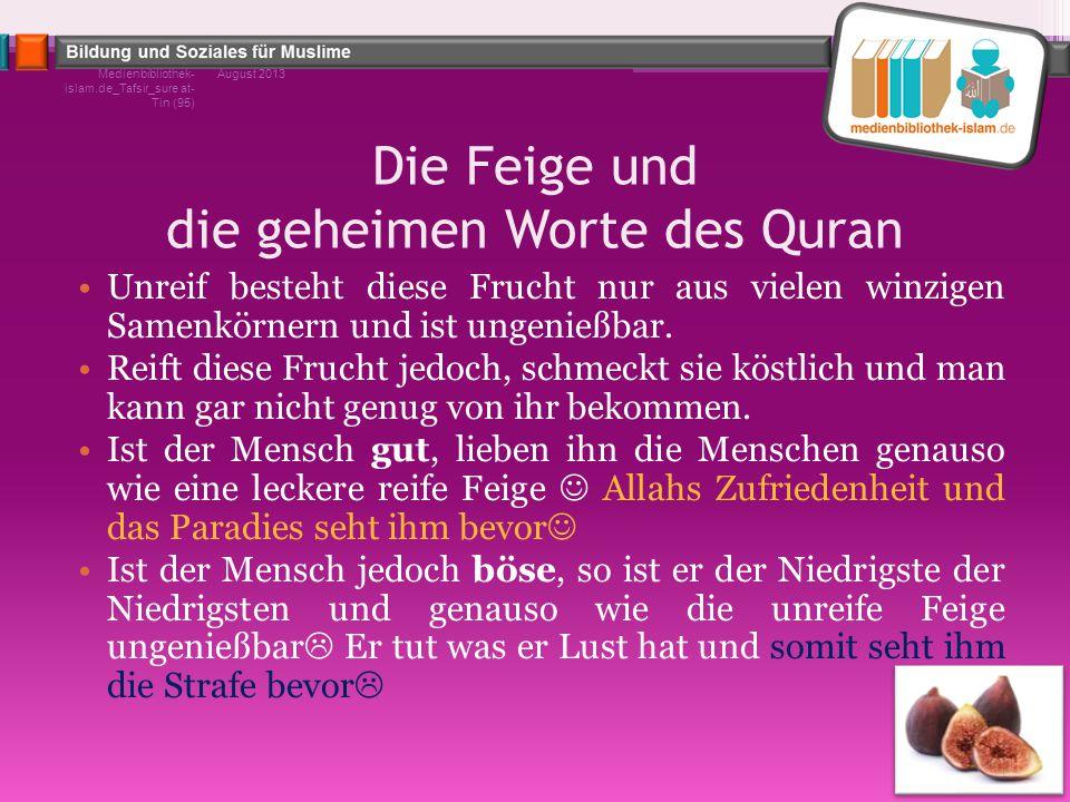 Die Feige und die geheimen Worte des Quran Unreif besteht diese Frucht nur aus vielen winzigen Samenkörnern und ist ungenießbar. Reift diese Frucht je