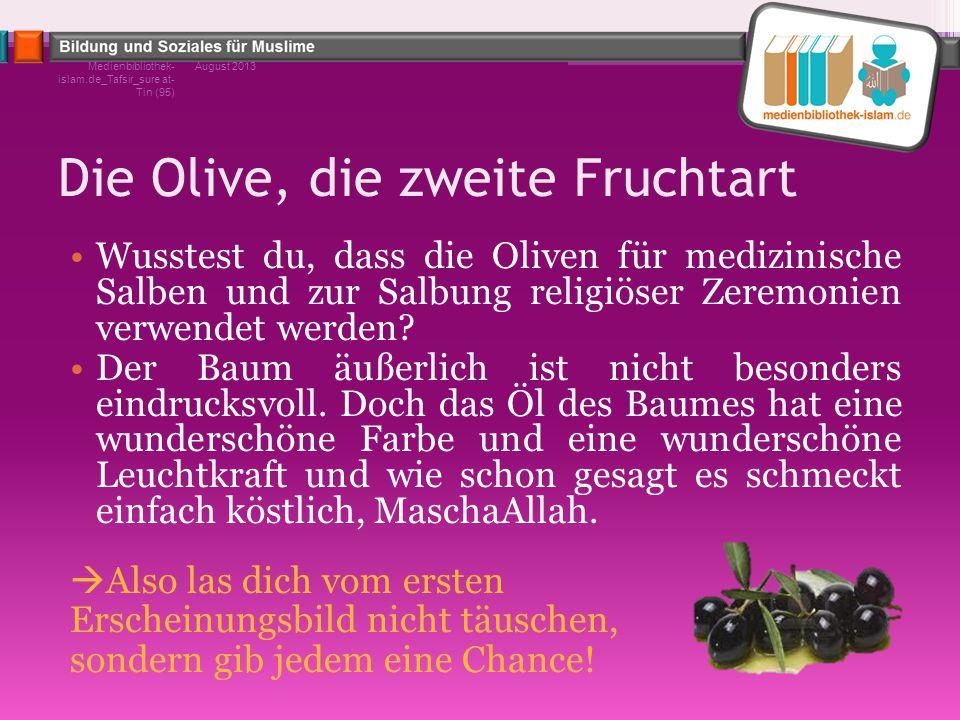 Die Olive, die zweite Fruchtart Wusstest du, dass die Oliven für medizinische Salben und zur Salbung religiöser Zeremonien verwendet werden? Der Baum
