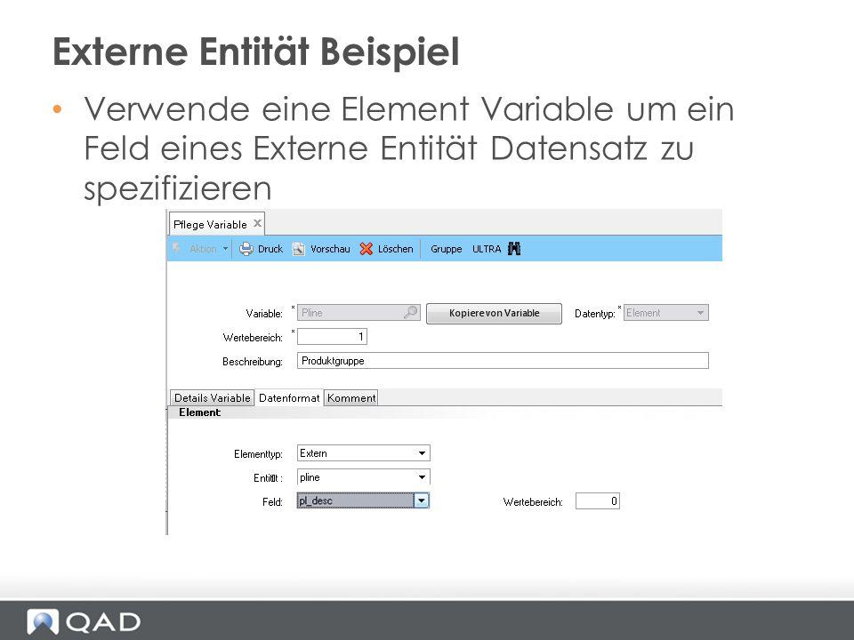 Verwende eine Element Variable um ein Feld eines Externe Entität Datensatz zu spezifizieren Externe Entität Beispiel