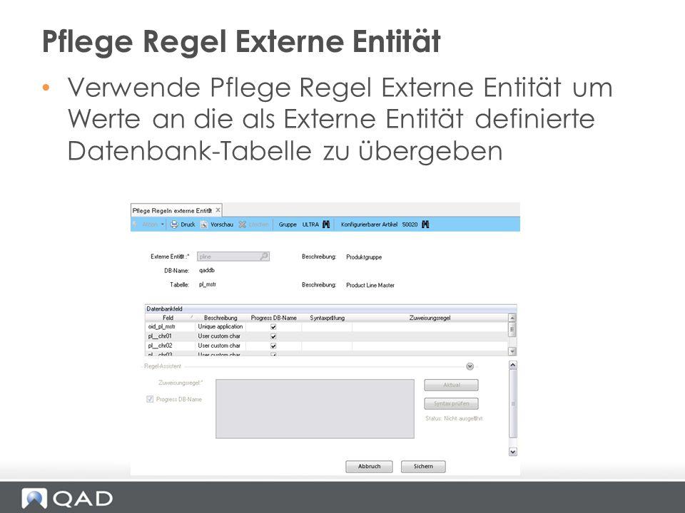 Verwende Pflege Regel Externe Entität um Werte an die als Externe Entität definierte Datenbank-Tabelle zu übergeben Pflege Regel Externe Entität